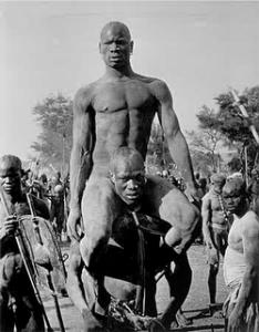 African wrestlers
