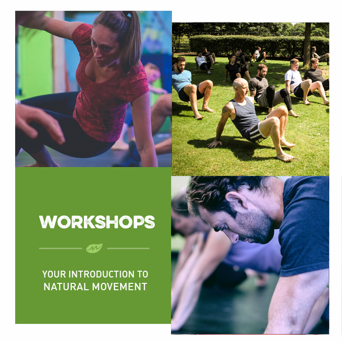 movnat workshops
