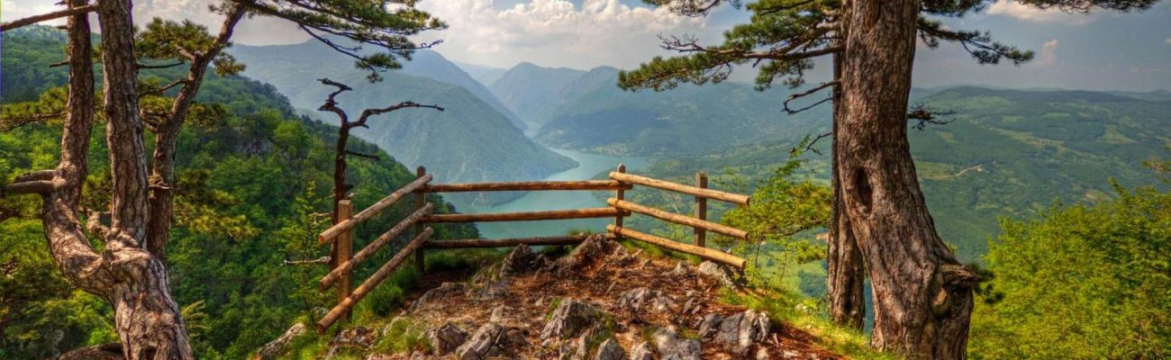 Level I Certification | Serbia – Tara National Park