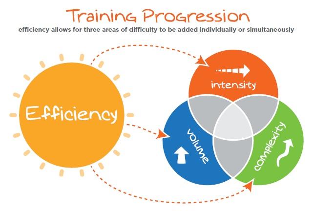 training progression - movnat progressive principle