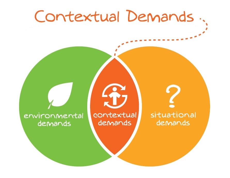 movnat contextual demands - practical principle
