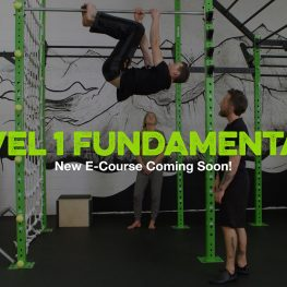 New E-Course: MovNat Level 1 Fundamentals
