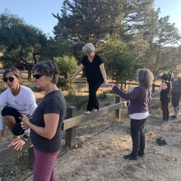 A Fresh Perspective on Aging and Movement